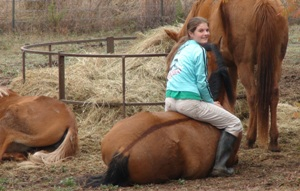 Spend quality time, not quantity of time, with your horse - www.heavenlygaitsequinemassage.com