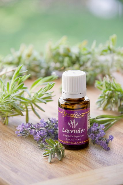Young Living pure therapuetic grade lavender essential oil - www.youngliving.org/heavenlygaits