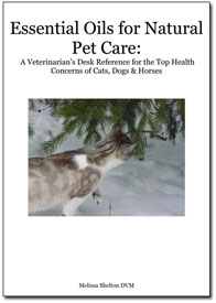 Learn about essential oil natural remedies for your pets straight from holistic veterinarian Dr. Melissa Shelton, DVM