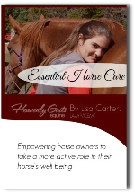 Essential Horse Care Intensive Training Home Study Bundle - www.heavenlygaitsequinemassage.com