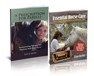 Lisa Carter's new Essential Horse Care eBook Bundle, learn to maintain a naturally healthy horse - www.heavenlygaitsequinemassage.com