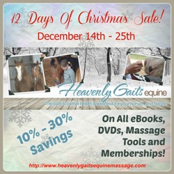 12 Days Of Christmas Sale - www.heavenlygaitsequinemassage.com
