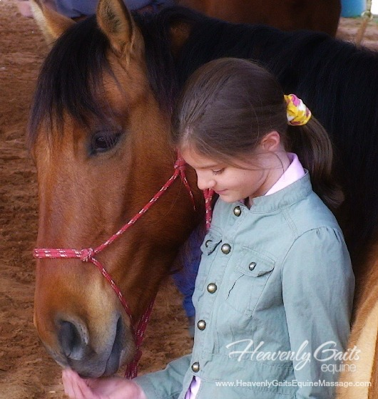 Heavenly Gaits Equine - Practical Natural Horse Care Solutions For A Naturally Healthy Horse
