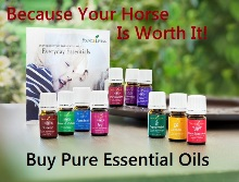 Buy pure essential oils for you family and horses - www.heavenlygaitsequinemassage.com