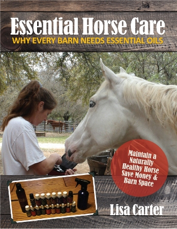 Essential Horse Care:  Why Every Barn Needs Essential Oils - www.heavenlygaitsequinemassage.com