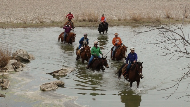 Obstacle challenges to help prep your horse for the trail - www.heavenlygaitsequinemassage.com