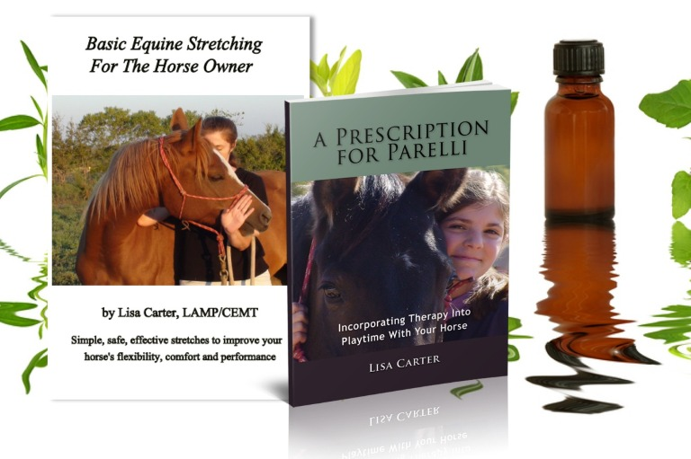 Essential Horse Care Training Pak - www.heavenlygaitsequinemassage.com