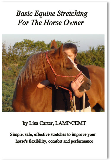 Basic Equine Stretching For The Horse Owner DVD - www.heavenlygaitsequinemassage.com