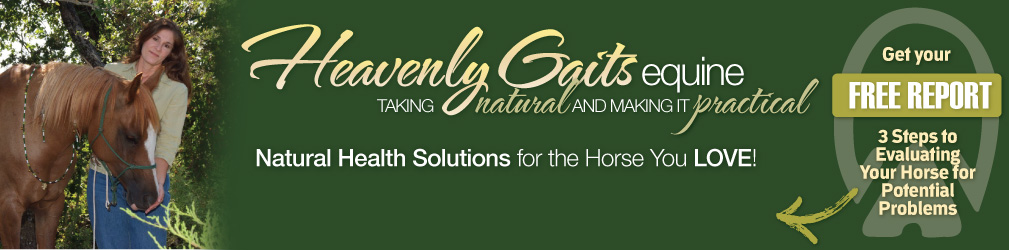 Natural Horse Care Tips | Benefits Of Horse Massage Therapy | Equine Bodywork | Exercises For Horses | Natural Remedies For Horses | Essential Oils | Using Essential Oils For Horses | Healing Your Horse Naturally | Improve Flexibility And Performance In Horses