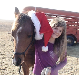 All I want for Chistmas is a...How about a rescue horse?  www.heavenlygaitsequinemassage.com