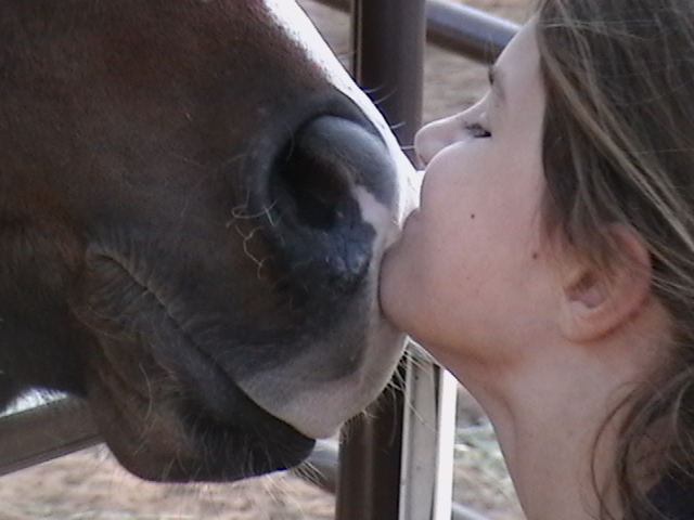3 Steps To Evaluating Your Horse For Potential Problems - www.heavenlygaitsequinemassage.com