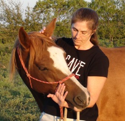 Asking for lateral flexion at the poll using your arm as a fulcrum - Heavenly Gaits Equine Massage