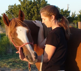 Asking for the full range of cervical lateral flexion of the horse - Heavenly Gaits Equine Massage
