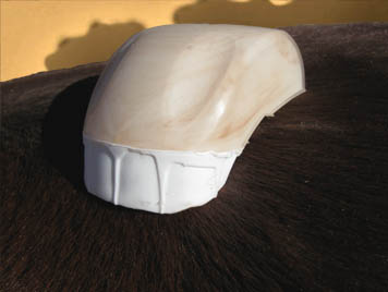 The Maxi Scratcher horse massage tool developed by Equine Bodyworker Dino Fretterd